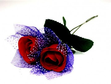 Rose mit blauem Tüll